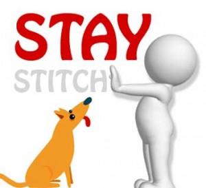 stay-stitch